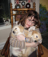 Suzi and puppies